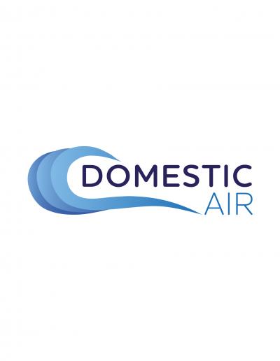 Domestic Air Logo